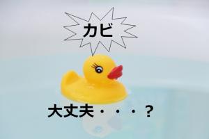 お風呂のおもちゃカビ